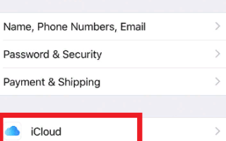 Как узнать свой эпл айди на айфоне если забыл пароль и логин