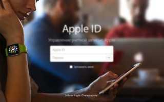Как узнать пароль apple id на айфоне se